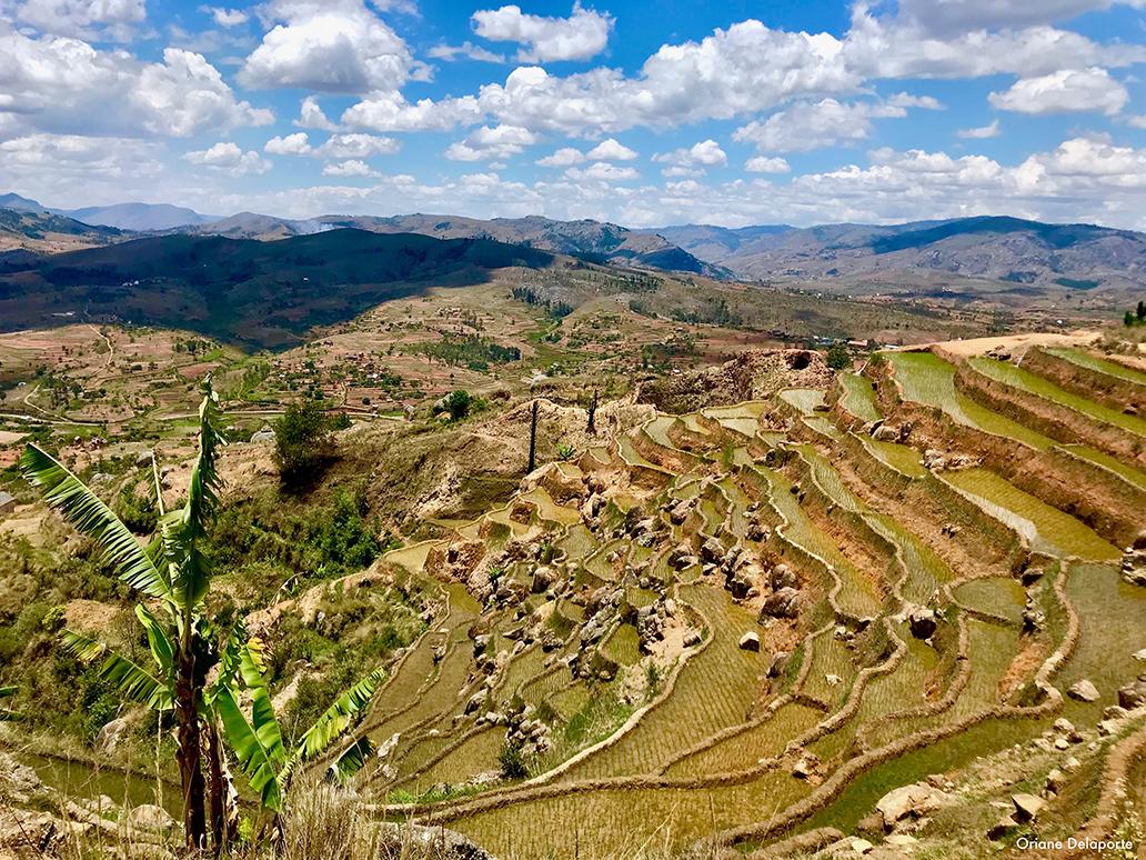 Madagascar - Morondava kely