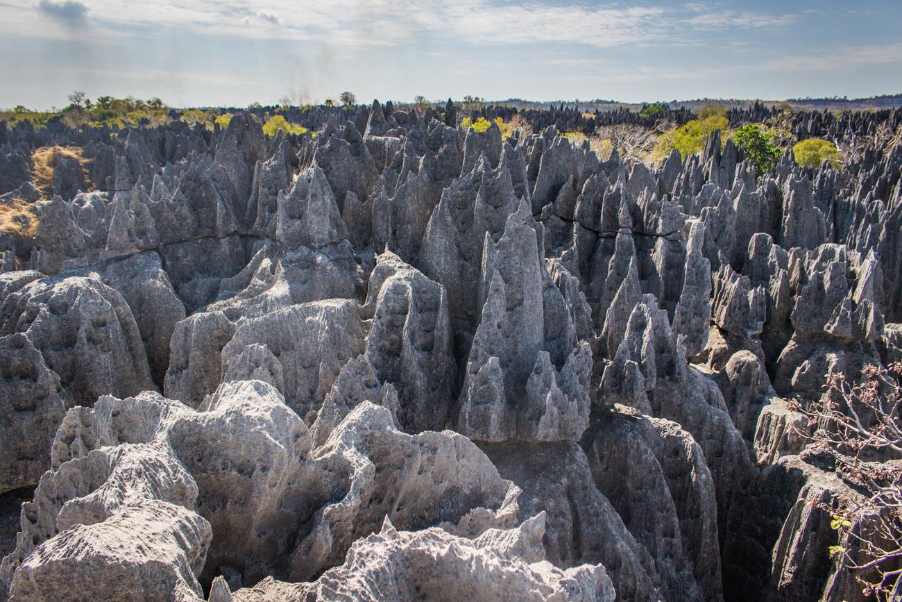 Madagascar - Tsingy de Bemaraha